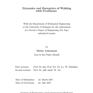 Dynamics and Energetics of Walking with Prostheses
